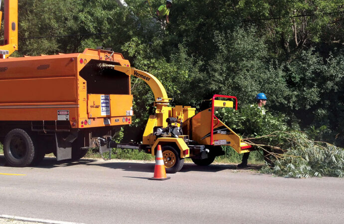Commercial Tree Services-South Florida Tree Trimming and Stump Grinding Services-We Offer Tree Trimming Services, Tree Removal, Tree Pruning, Tree Cutting, Residential and Commercial Tree Trimming Services, Storm Damage, Emergency Tree Removal, Land Clearing, Tree Companies, Tree Care Service, Stump Grinding, and we're the Best Tree Trimming Company Near You Guaranteed!