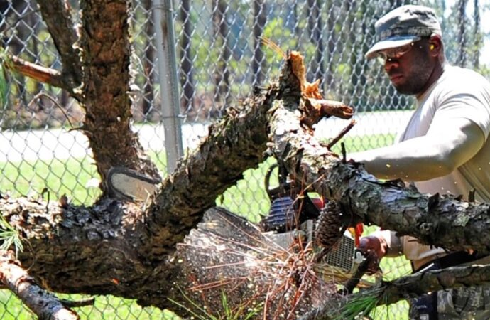 Delray Beach-South Florida Tree Trimming and Stump Grinding Services-We Offer Tree Trimming Services, Tree Removal, Tree Pruning, Tree Cutting, Residential and Commercial Tree Trimming Services, Storm Damage, Emergency Tree Removal, Land Clearing, Tree Companies, Tree Care Service, Stump Grinding, and we're the Best Tree Trimming Company Near You Guaranteed!