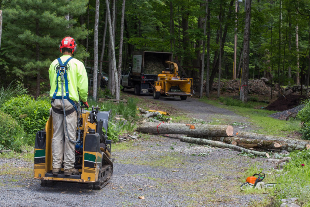 Emergency Tree Removal-South Florida Tree Trimming and Stump Grinding Services-We Offer Tree Trimming Services, Tree Removal, Tree Pruning, Tree Cutting, Residential and Commercial Tree Trimming Services, Storm Damage, Emergency Tree Removal, Land Clearing, Tree Companies, Tree Care Service, Stump Grinding, and we're the Best Tree Trimming Company Near You Guaranteed!