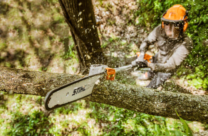 Lake Worth-South Florida Tree Trimming and Stump Grinding Services-We Offer Tree Trimming Services, Tree Removal, Tree Pruning, Tree Cutting, Residential and Commercial Tree Trimming Services, Storm Damage, Emergency Tree Removal, Land Clearing, Tree Companies, Tree Care Service, Stump Grinding, and we're the Best Tree Trimming Company Near You Guaranteed!