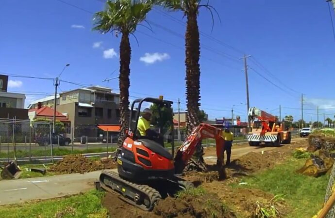 Palm Tree Removal-South Florida Tree Trimming and Stump Grinding Services-We Offer Tree Trimming Services, Tree Removal, Tree Pruning, Tree Cutting, Residential and Commercial Tree Trimming Services, Storm Damage, Emergency Tree Removal, Land Clearing, Tree Companies, Tree Care Service, Stump Grinding, and we're the Best Tree Trimming Company Near You Guaranteed!