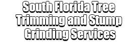 South Florida Tree Trimming and Stump Grinding Services Logo-We Offer Tree Trimming Services, Tree Removal, Tree Pruning, Tree Cutting, Residential and Commercial Tree Trimming Services, Storm Damage, Emergency Tree Removal, Land Clearing, Tree Companies, Tree Care Service, Stump Grinding, and we're the Best Tree Trimming Company Near You Guaranteed!