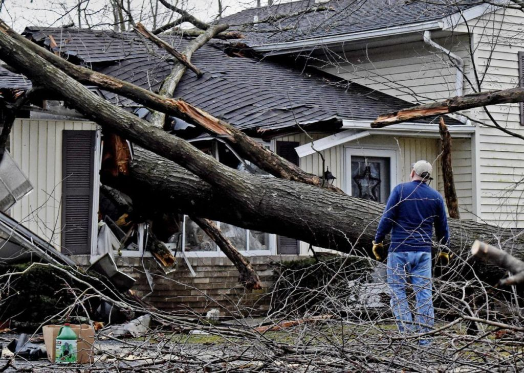 Storm Damage-South Florida Tree Trimming and Stump Grinding Services-We Offer Tree Trimming Services, Tree Removal, Tree Pruning, Tree Cutting, Residential and Commercial Tree Trimming Services, Storm Damage, Emergency Tree Removal, Land Clearing, Tree Companies, Tree Care Service, Stump Grinding, and we're the Best Tree Trimming Company Near You Guaranteed!